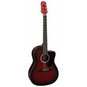 FLIGHT SF24C RDS - фолк гитара